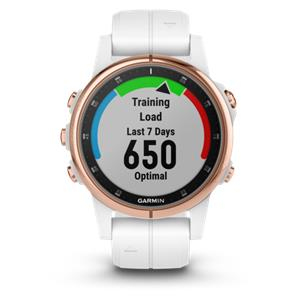Garmin fenix 5S Plus Sap