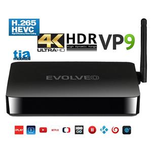 EVOLVEO ANDROID BOX H4 +